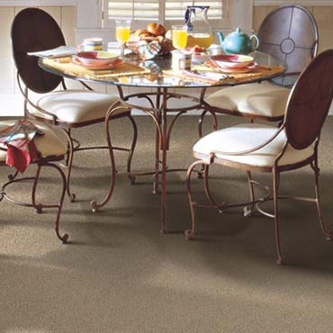 Horizon Carpet | Traverse City, MI