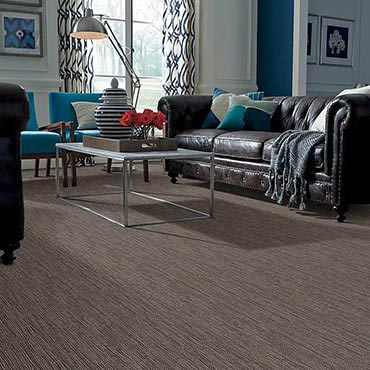 Anso® Nylon Carpet | Traverse City, MI