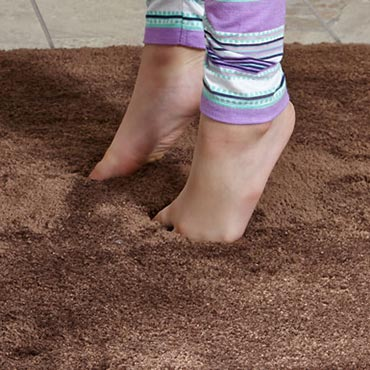 STAINMASTER® Area Rugs | Traverse City, MI